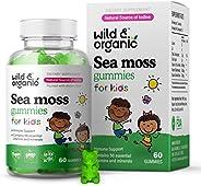 Wild & Organic Kids Sea Moss Gummies - Irish Moss, Bladderwrack & Chicory Root Superfood Nutritional S