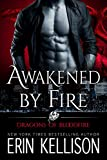 Awakened by Fire: Dragons of Bloodfire 2