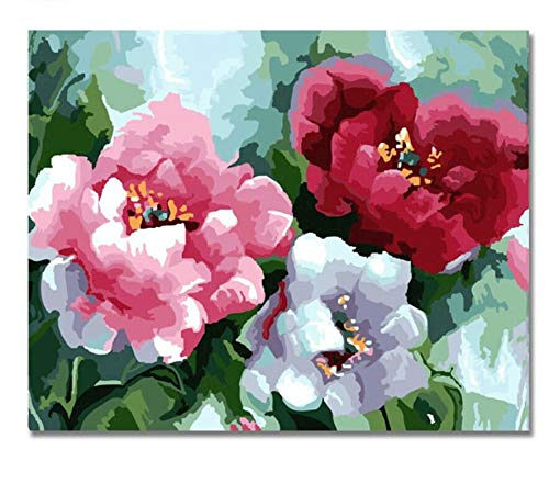 QIANDONG1 Three Color Flower Painting by Numbers DIY Hand Painted Drawing Pictures On Canvas Art Pinturas Al Oleo Cuadros Decoracion,40x50cm,Frameless]()