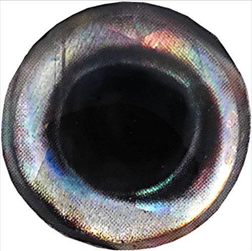 Brule 3-D Hard Epoxy Eyes (Bigeye-S, 6mm)
