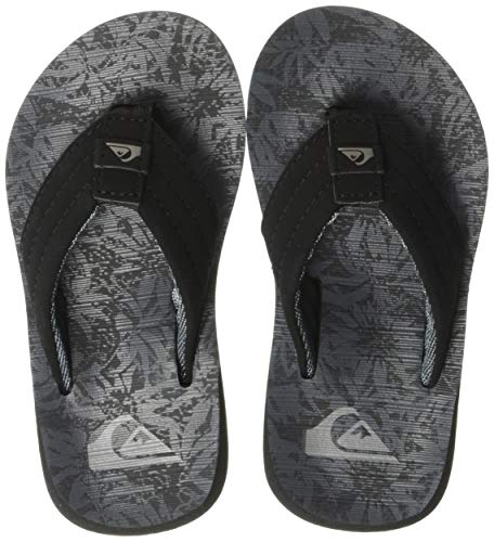 - Quiksilver Boys' Carver Print Youth Flip-Flop, Grey/Black, 13(31) M US Big Kid