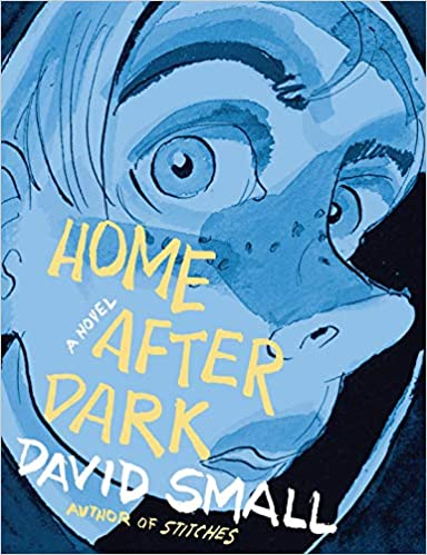 Image result for home after dark cover
