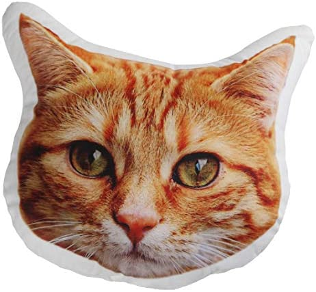 Cat Pillow Personalized Cat Photo Pillow Cat Lover Gifts