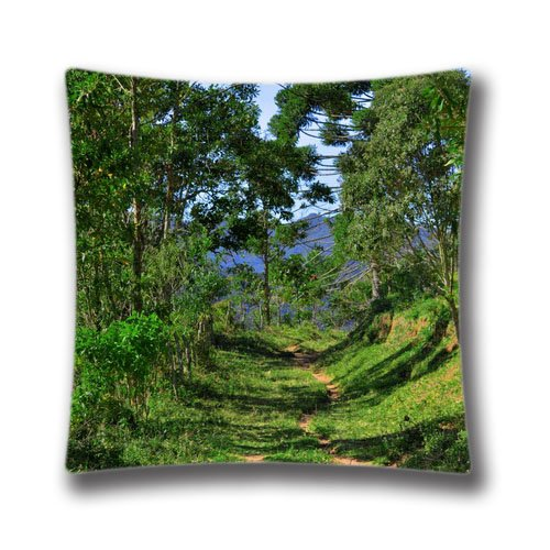 """Price comparison product image Pop Home Cotton & Polyester Square Throw Pillow Case Shell Decorative Cushion Cover Pillowcase Into the Forest 18"""" x 18"""""""