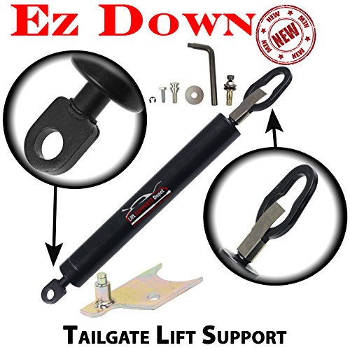 Sachs SG304901EZ Lift Support ()