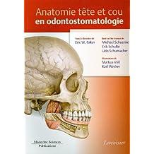 Anatomie Tete et Cou En Odontostomatologie