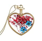 Usstore 1PC Women Dry Flower Heart Glass Wishing Review and Comparison
