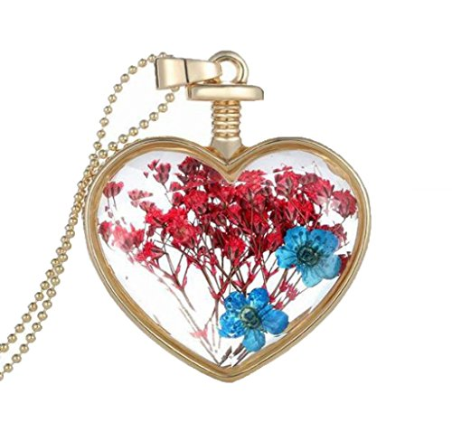 Usstore 1PC Women Dry Flower Heart Glass Wishing Necklace Bottle Pendants Partty Gift Alloy (C)