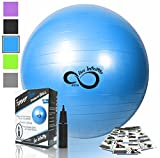 Exercise Ball -Professional Grade Exercise Equipment Anti Burst Tested with Hand Pump- Supports 2200lbs- Includes Workout Guide Access- 55cm/65cm/75cm/85cm Balance Balls (Bright Blue, 55 cm)