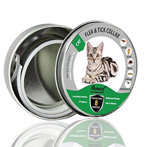 DYEOF Flea Tick Collar for Cats - 8 Months Protection - Hypoallergenic, Adjustable & Waterproof Cat Collar - Flea Treatment Tick Prevention Natural Essential Oil