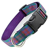 Plaid Dog Collar, Lindsay Tartan, Small, 5/8