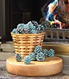 Fireplace Rainbow Flame-Coloring Flame Changing Pine Cones 1 Pound Bag