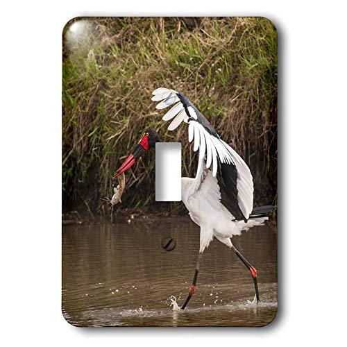 Saddle Stork Billed - 3dRose Danita Delimont - Storks - Kenya, saddle-billed stork, with fish - double toggle switch (lsp_310437_2)