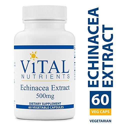 Vital Nutrients - Echinacea Extract 500 mg - Immune System Support - 60 Capsules -