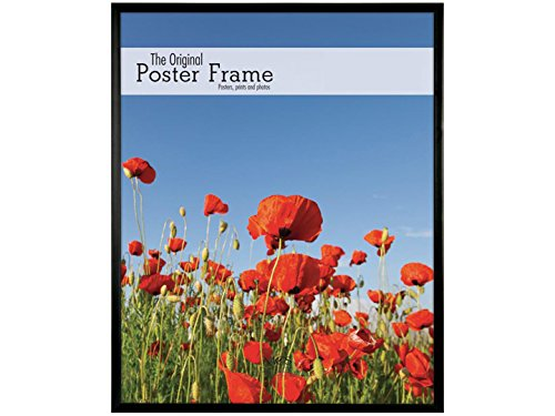 MCS Acrylic and Corrugated Back Poster Frame For a 18- Inch x 24- Inch Photograph - Black 22834