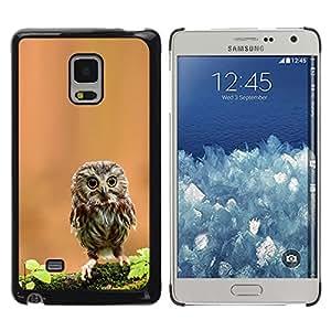 TopCaseStore / la caja del caucho duro de la cubierta de protección de la piel - Cute Curious Mini Owl - Samsung Galaxy Mega 5.8 9150 9152
