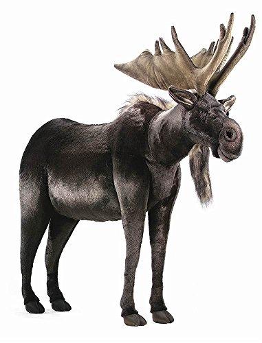 Life Size Moose