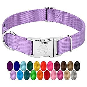 Country Brook Petz | Premium Nylon Dog Collar with Metal Buckle (Large, 1″ Wide, Lavender) Click on image for further info.