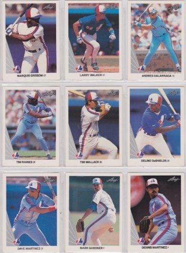 Montreal Expos 1990 Leaf Baseball Team Set (Premier Issue) (Series 1 & 2) (Larry Walker Rookie) (Larry Walker 1990 Leaf)