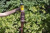 Tiki Brand Citronella Scented Torch Fuel, 12