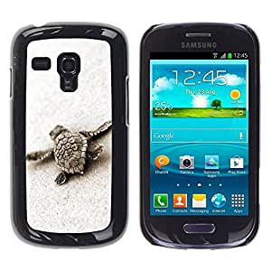 Paccase / SLIM PC / Aliminium Casa Carcasa Funda Case Cover para - Turtle Baby Cute Sand Sea Animal Marine - Samsung Galaxy S3 MINI NOT REGULAR! I8190 I8190N