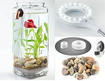 NoClean acuarios gravityflow autolimpieza cristal Betta Tanque Starter Kit con pulido piedras y illumaflex LED - El Original autolimpieza Acuario.