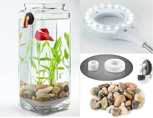 NoClean Aquariums GravityFlow Self-Cleaning Glass Betta Tank Starter Kit with Polished Stones and IllumaFlex LED - The Original Self-Cleaning Aquarium!