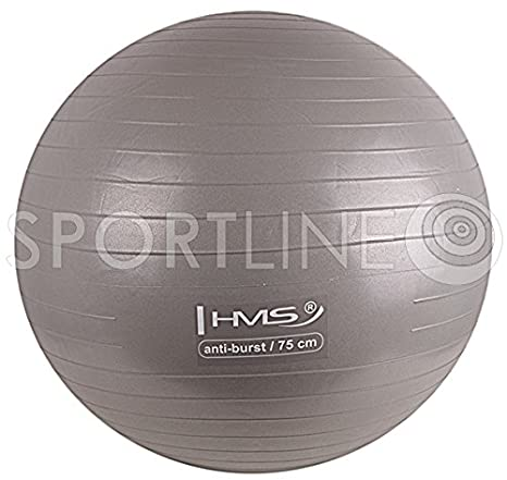 Pelota para sentarse Gimnasia Fitness pelota de gimnasia: Amazon ...