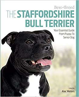 The Staffordshire Bull Terrier Your Essential Guide From Puppy To