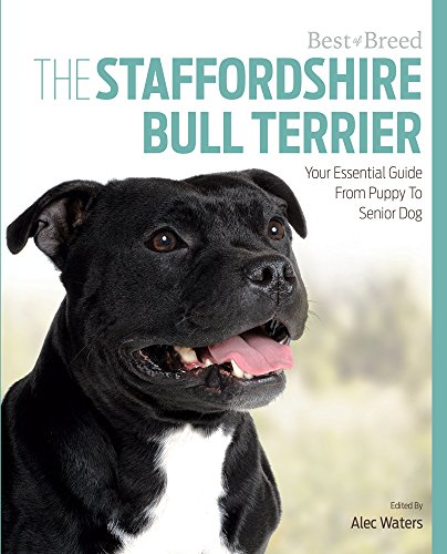 The Staffordshire Bull Terrier: Your Essential Guide From Puppy To Senior Dog (Best of Breed)