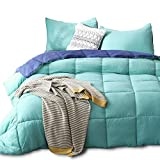 Kasentex Quilted Comforter Set, Goose Down Alternative Microfiber Fill - All Season - Super Soft - Machine Washable - Hypoallergenic - Reversible - Solid Color, Duvet Insert, Twin+1 Sham, Green/Blue