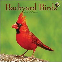 2014 Backyard Birds Mini Calendar