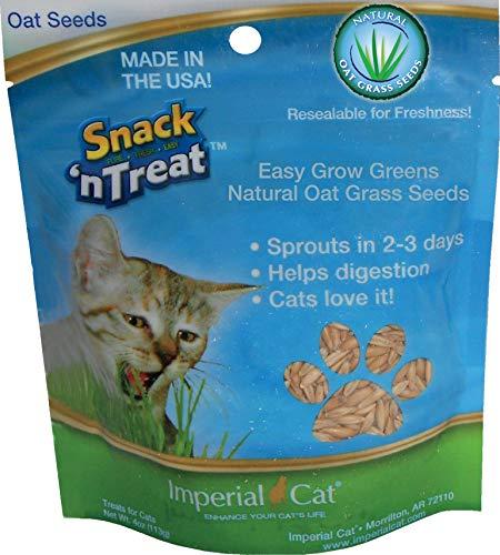 High Oats - Imperial Cat Easy Grow Oat Grass Seeds, 4-Ounce