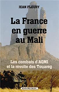 La France en guerre au Mali : les combats d'AQMI et la révolte des Touareg