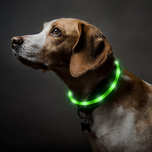 BSEEN LED Dog Collar, USB Rechargeable Light Up Pet Safety Collar with 3 Glowing Modes, Flexible Silicone Dog Collar Great for Small Medium Large Dogs (Green)