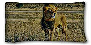 Soft Pillow Case Cover ( Animals beast lion nature desert ) Soft Pillow Case Cover 20*36 Inch (One Sides)Zippered Pillowcase suitable for Twin-bed PC-Red-15946