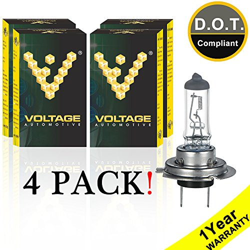 Standard Halogen Replacement Bulbs - Voltage Automotive H7 Standard Headlight Bulb For Car Motorcycle (4 Pack) - OEM Replacement Halogen High Beam Low Beam Fog Lights