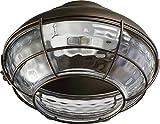 One Light Oiled Bronze Fan Light Kit 1374-886