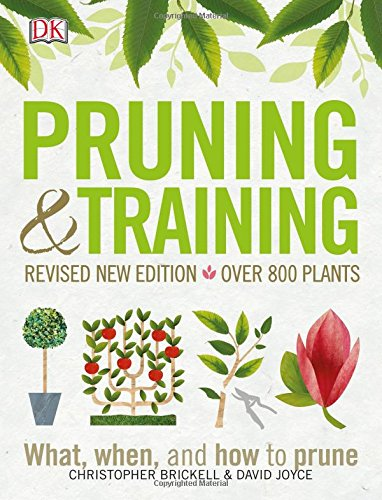 Pruning and Training, Revised New Edition: What, When, and How to Prune