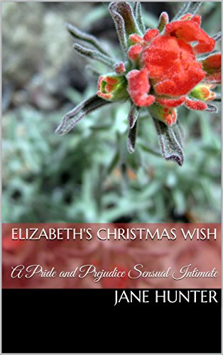 Elizabeth's Christmas Wish: A Pride and Prejudice Sensual Intimate