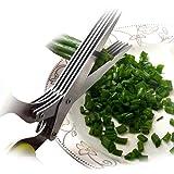 Acero Inoxidable 5 – Tijeras para hierbas aromáticas con asa verde lima y cuchilla de limpieza Peine