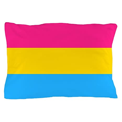 Amazon.com: CafePress – Bandera Pansexual Pride – Funda de ...