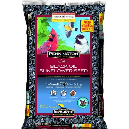 Pennington Select Black Oil Sunflower Seed Wild Bird Feed, 40 lbs (Sunflower Wild Bird Seed)