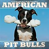 (12x12) American Pit Bulls 16-Month 2013 Wall Calendar