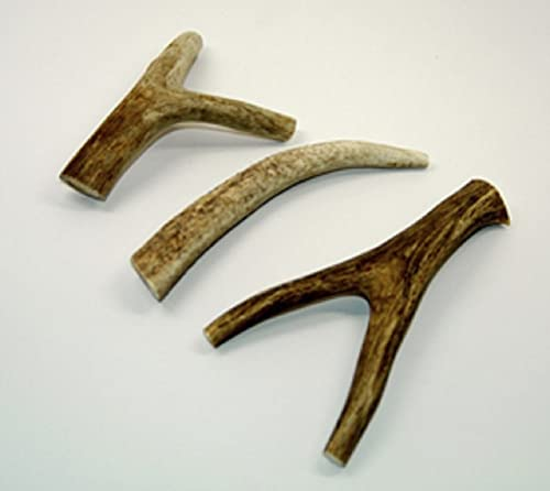 Pet Solutions Unlimited Deer Antler Chews