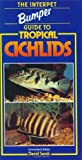 The Interpet Bumper Guide to Tropical Cichlids, , 1902389689