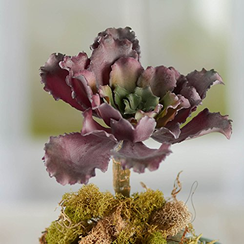 Factory Direct Craft Group of 4 Flocked Burgundy Artificial Winter Cabbage Picks for Floral Embellishing, Fairy Garden Decor and Designing ()
