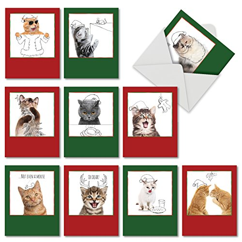 M6583XSB Christmas Cats & Doodles: 10 Assorted Blank Christmas Note (Kitty Christmas Card)