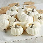 Factory-Direct-Craft-16-Assorted-Harvest-Off-White-Artificial-Gourds-and-Pumpkins