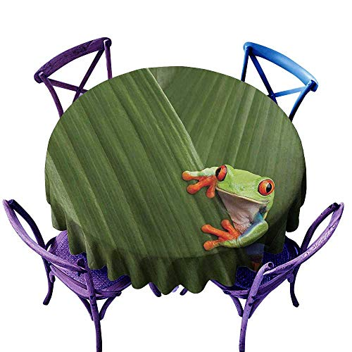 Lodges Rica Costa (WinfreyDecor Animal Dustproof Tablecloth Red Eyed Tree Frog Hiding in Exotic Macro Leaf in Costa Rica Rainforest Tropical Nature Indoor Outdoor Camping Picnic D51 Green)